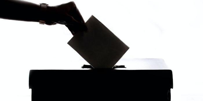¿A quién vas a votar?
